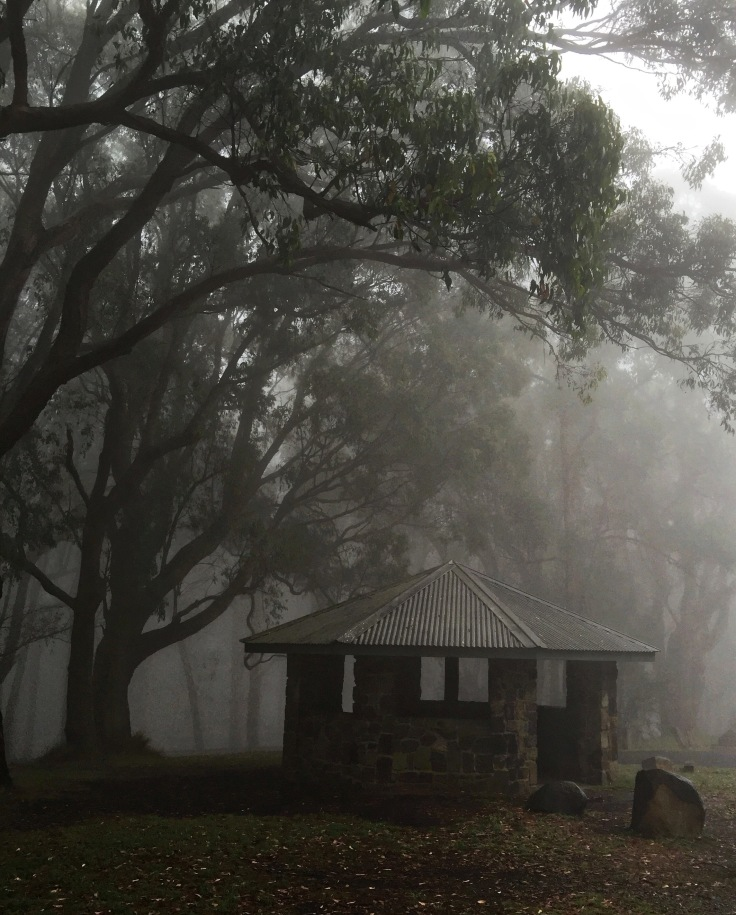 Foggy Hut_HDR_edit